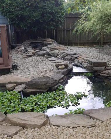 Pond Rebuild