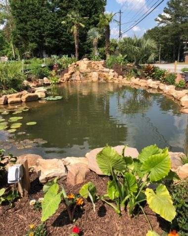 Display Pond