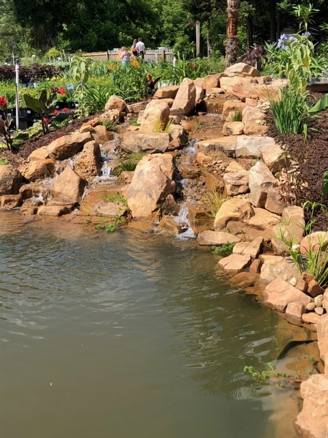 Display Pond