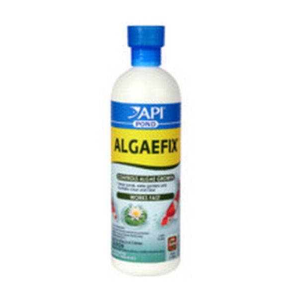 API AlgaeFix Liquid Algaecide