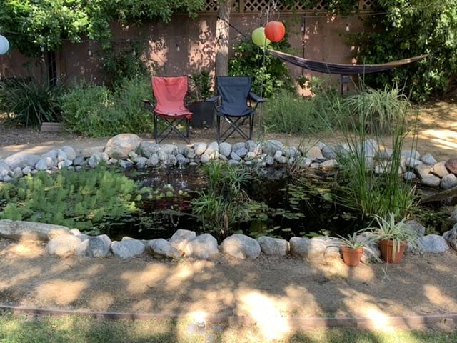Fumo Backyard Oasis